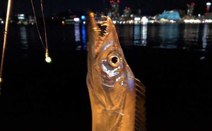 関西エリア「陸っぱりタチウオ」超入門:代表的なエサ釣り2種とは?