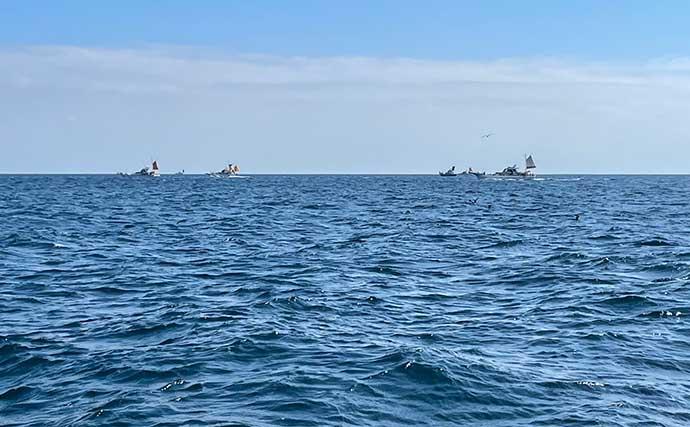 コマセマグロ釣りで52.8kg『瀬の海モンスター』 未体験の激闘を制す