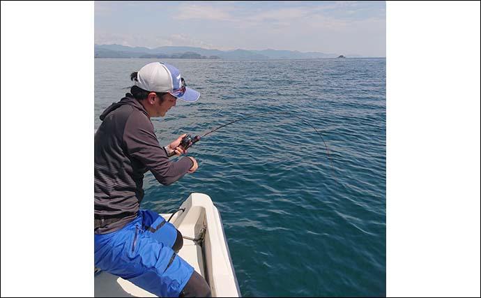 ボート釣りで42.5cmシロアマダイ6匹 エサにもタイラバにもヒット