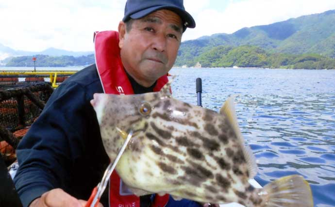 ボート五目釣りで32cm頭にカワハギ13尾 良型の2匹掛けも