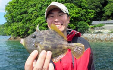 秋のイカダ五目釣りは初心者にも最適 様々な釣り方で多彩魚種を狙おう