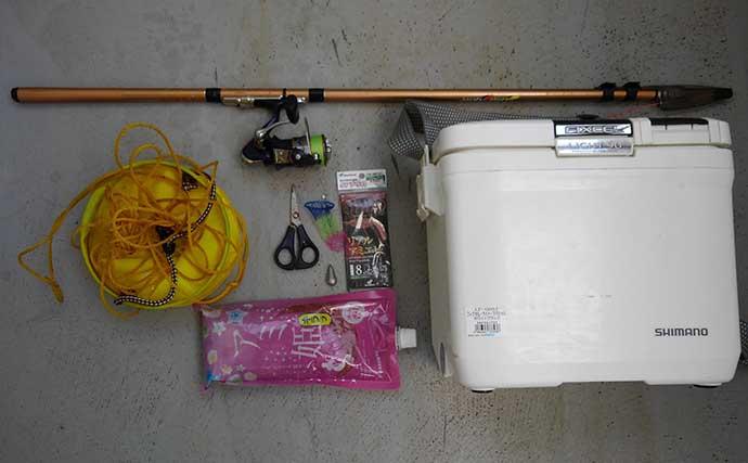 東京湾奥「サビキ釣り」トップシーズン到来 タックルとキホンの釣り方