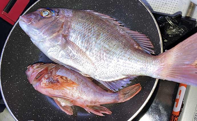 親子水入らず船中泊釣行でマダイ 釣魚肴の『海上晩酌』は一生の思い出に