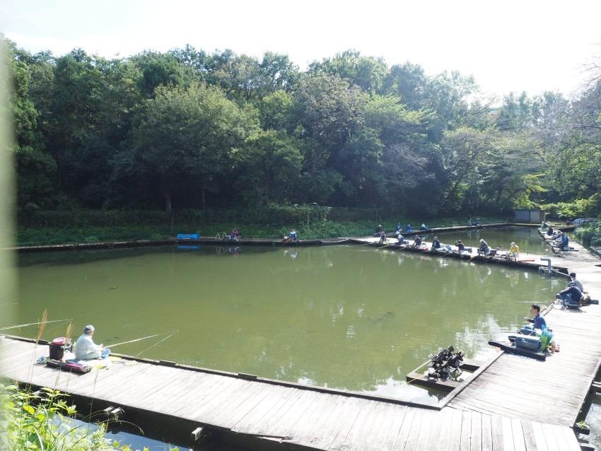 横浜市にあるオアシス熊の池